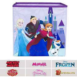 Everything Mary Frozen Collapsible Storage Bin by Disney – Cube Organizer for Closet, Kids ...
