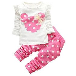 Baby Girl Clothes Infant Outfits Set 2 Pieces Long Sleeved Tops + Pants (3-6 Months, Pink)