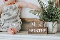 Sweet Sage Studio Wood Baby Milestone Blocks – 6 Color Styles – Best Baby Age Photo  ...