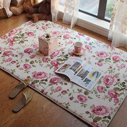 Short Velvet Romantic Pink Rose Rug for Bedroom Girls Rooms Kids Rooms Nursery Decor Mats &#8211 ...