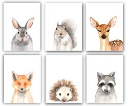 Woodland Animals Nursery Decor Watercolor Art – Set of 6 (UNFRAMED) 8×10 Prints (Opti ...