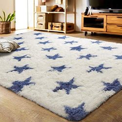LOCHAS Luxury Velvet Shag Area Rug Mordern Indoor Plush Fluffy Rugs, Extra Soft and Comfy Carpet ...