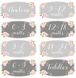Mumsy Goose Girl Nursery Drawer Labels Pink Grey Floral Baby Clothes Organizers Girl Dresser Sti ...