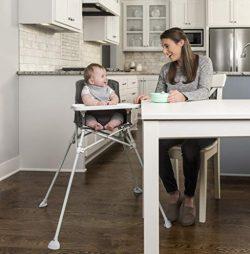 Regalo My High Chair Portable Travel Fold & Go Highchair, Indoor and Outdoor, Bonus Kit, Inc ...